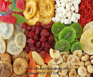 Hoa quả được sấy khô từ tủ sấy công nghiệp 9 khay đa năng